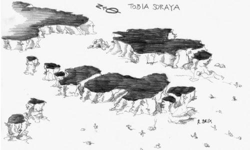 Tauchen am Tauchplatz Tobia Soraya in Safaga